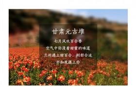 三口福美颜羹现已正式上线苏宁众筹!