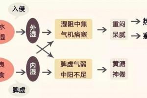 贡方堂千年汉方墨灸,弘扬华夏传统中医文化!